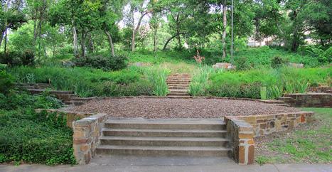 Reverchon Park   Arborilogical   Scoop.it