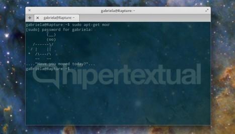 Comandos para Linux que todos deberían conocer - Bitelia | Sistema Operativos | Scoop.it
