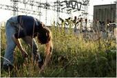 Conférence: «L'agriculture urbaine: Regards croisée sur la ville comestible de demain» | Potagers urbains | Scoop.it