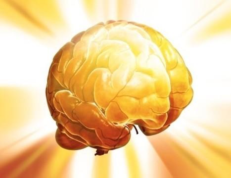 Así funciona el cerebro cuando aprende | Neuroscience | Scoop.it
