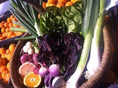 2013 Summer Sedona Community Farmers Market at Tlaquepaque | Gateway to Sedona | CALS in the News | Scoop.it