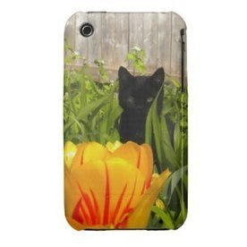 Black Cat iPhone Case | iPhone Cases | Scoop.it