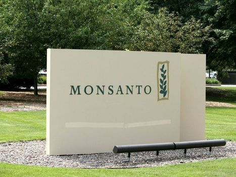 Monsanto, Microsoft to invest in agricultural technology in Brazil | Grain du Coteau : News ( corn maize ethanol DDG soybean soymeal wheat livestock beef pigs canadian dollar) | Scoop.it