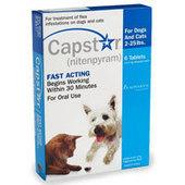 Buy Capstar Flea Treatment Tablets For Cats | Pet Supplies | Scoop.it