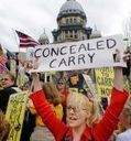 Court strikes down Illinois concealed carry law - Seattle Post Intelligencer | Worlds Greatest Detective | Scoop.it