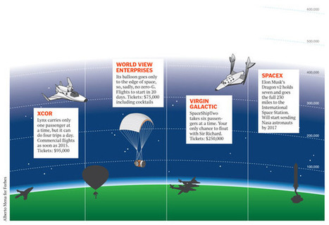 Space tourism, on a budget - Forbes India   Travel Desk   Scoop.it