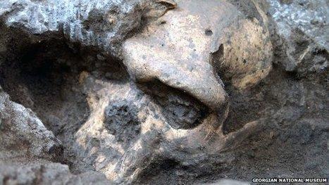 Cinq crânes relancent le débat sur l'évolution humaine - Journal de la Science   Evolution de l'Homme   Scoop.it