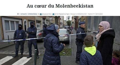 Bobos et Chances pour la Belgique manifestent à Molenbeek contre les contrôles...   Résistance Républicaine   Islam : danger planétaire   Scoop.it
