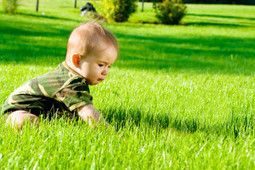 Lawn Service Eastvale Corona Norco Riverside - The Best Lawn Service in the IE   House Cleaning tips   Scoop.it