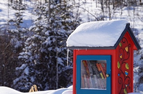 19 badass Little Free Libraries spotted by our readers | Front Porch Community: Neighborhood Community-Building | Scoop.it