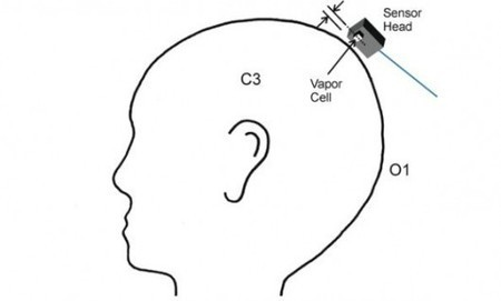 Tiny new sensor could simplify brain wave research | Longevity science | Scoop.it