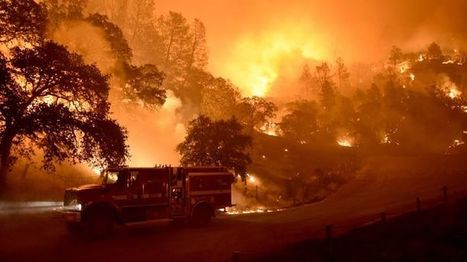 What Megablazes Tell Us About the Fiery Future of Climate Change | The EcoPlum Daily | Scoop.it
