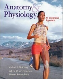 Test Bank For » Test Bank for Anatomy & Physiology, 1st Edition: Michael McKinley Download | Anatomy & Physiology Test Bank | Scoop.it