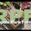 Farming in the 'Hood – Preparing for the Future! | Vertical Farm - Food Factory | Scoop.it