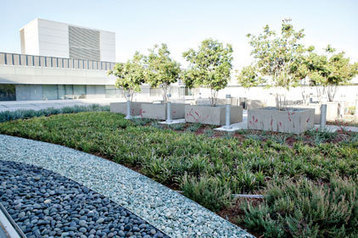 Is Your Building Conducive to the Installation of a Green Roof? | BioArchitecture | Scoop.it
