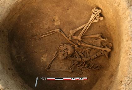 D'exceptionnelles sépultures du Néolithique récent à Gougenheim (Bas-Rhin) - Institut national de recherches archéologiques préventives | World Neolithic | Scoop.it