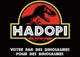 Et si le ridicule finissait par avoir la peau d'Hadopi? | Nouvelle formule - Lexpress | SWicart | Scoop.it
