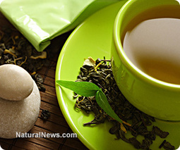 Research reveals the latest weapon against Parkinson's and Alzheimer's: Green tea | Integrative In-Home Care | Scoop.it