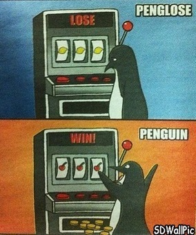 Penguin Lose and Win! | Free HD Desktop Wallpapers Download Online | Funny Pic And Wallpapers | Scoop.it
