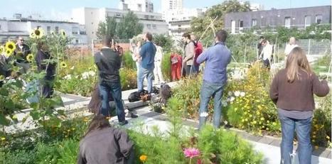 Que mille potagers fleurissent sur les toits de nos villes ! | Immobilier | Scoop.it