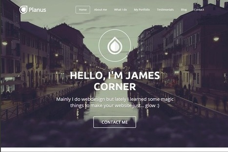 PlanusWP – One Page Wordpress Theme | eCommerce Website Templates | Scoop.it