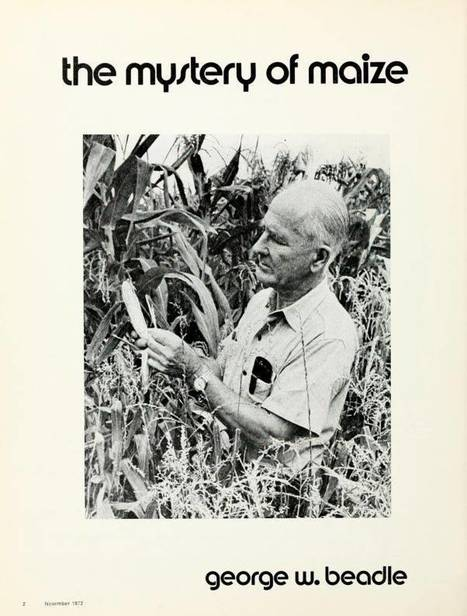 George Beadle, The Mystery of Maize (1972) | MAIZE | Scoop.it