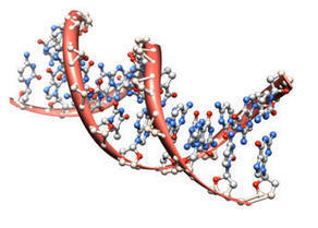 Study Reveals Gene Expression Changes with Meditation | Mom Psych | Scoop.it