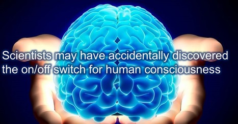 Researchers May Have Discovered The Consciousness On/Off Switch | Biotech and Beyond | Scoop.it