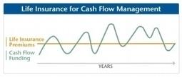 A Different Twist On Cash Management: Life Insurance | insurance | Scoop.it