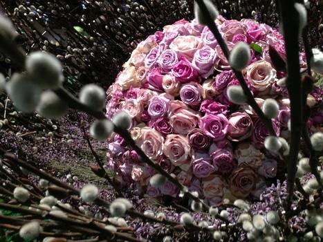 Bloomin' Creative | Alvaré Associates, Inc. | Anita Alvare Blog | Scoop.it