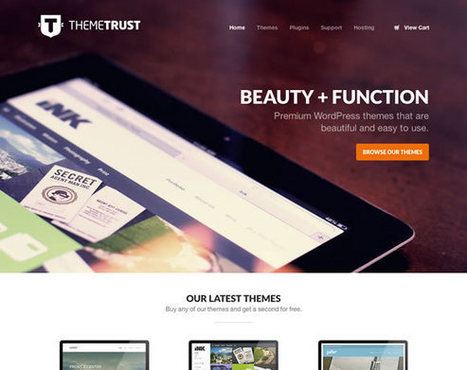 21 Beautiful Examples of Big Images in Web Design | ToxNetLab's Blog | Scoop.it