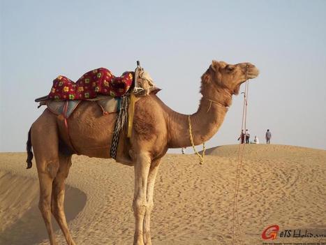 Mon voyage à Jaisalmer Rajasthan | Voyage photographie en Inde | Scoop.it