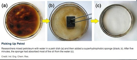 Material Science: A chemical treatment makes a household sponge slurping up oil instead of water | Water,lakes and seas. | Scoop.it