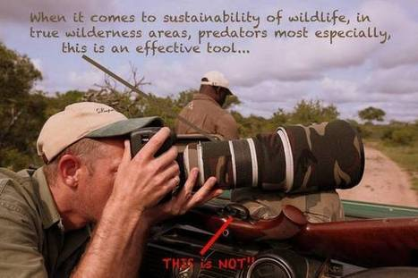 10 Reasons to Shoot Wildlife with a Camera and not a Gun | Hunting Gears | Scoop.it
