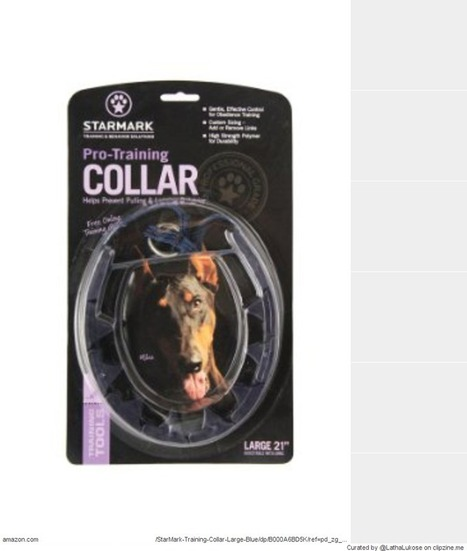Best training collars dogs 2014 Safest with Reviews | for home | Scoop.it