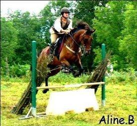 Centre équestre Pyrénées Atlantiques 64 : randonnées à cheval Pyrénées, location vente de chevaux - accueil | Ferme équestre | Scoop.it