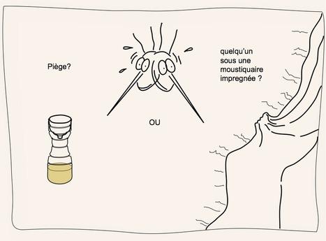 Des moustiques peints en rose pour étudier la malaria | EntomoScience | Scoop.it