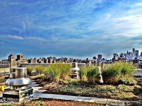 On Top of New York City's Green Roofs with Greensulate | Sustainable Urban Agriculture | Scoop.it
