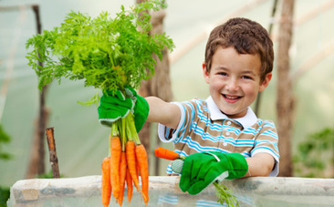 5 Awesome School Gardens Helping Kids Eat Healthy | Food Science and Technology | Scoop.it