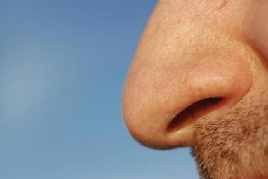 Study: Smelling farts may be good for your health | Quirky (with a dash of genius)! | Scoop.it