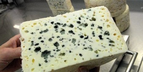 Le Roquefort investit la cour du ministère de l'Agriculture | The Voice of Cheese | Scoop.it