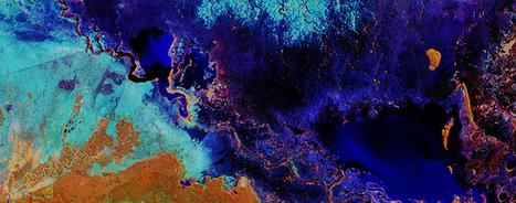 Flood peaks in the Pantanal wetland. | Agronegócio | Scoop.it