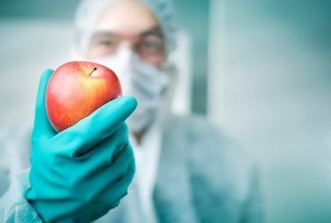 Genetic Engineering Disadvantages   Food issues   Scoop.it