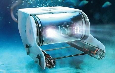 Exploring the Deep Ocean With Underwater Robots | Robots and Robotics | Scoop.it