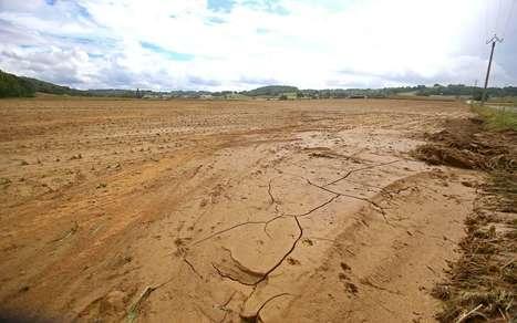Grêle du 28 mai : la procédure des calamités agricoles est lancée | Agriculture en Pyrénées-Atlantiques | Scoop.it