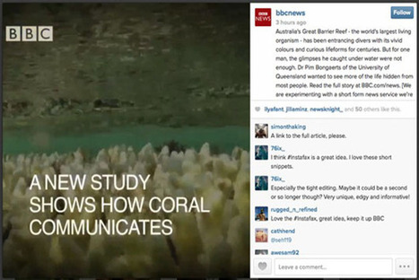 BBC Tests Instagram As A Breaking News Service - PSFK | internal communication | Scoop.it