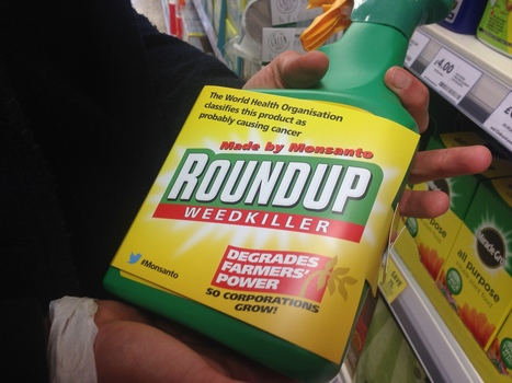 How do we hold corporations like Monsanto to account? | Sustain Our Earth | Scoop.it