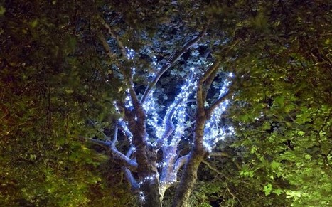 Kent town is first in country to put up Christmas lights - 121 days early | chainsawreviews.biz | Scoop.it