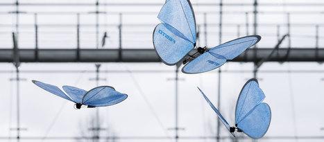 eMotionButterflies ultra light uav, flies like a real butterfly | Military Aviation & Technology | Scoop.it