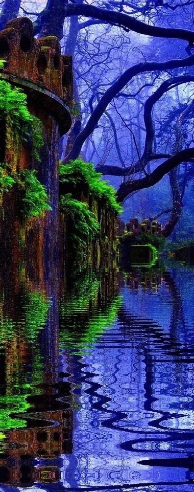 Castle Forest.....   BEATIFUL   Scoop.it